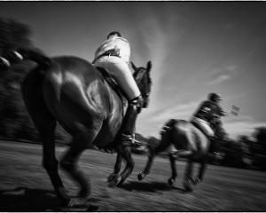 Gerald Y Plattner // Polo